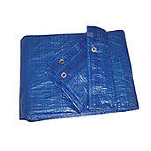 FEMA Blue Poly Tarp Kit